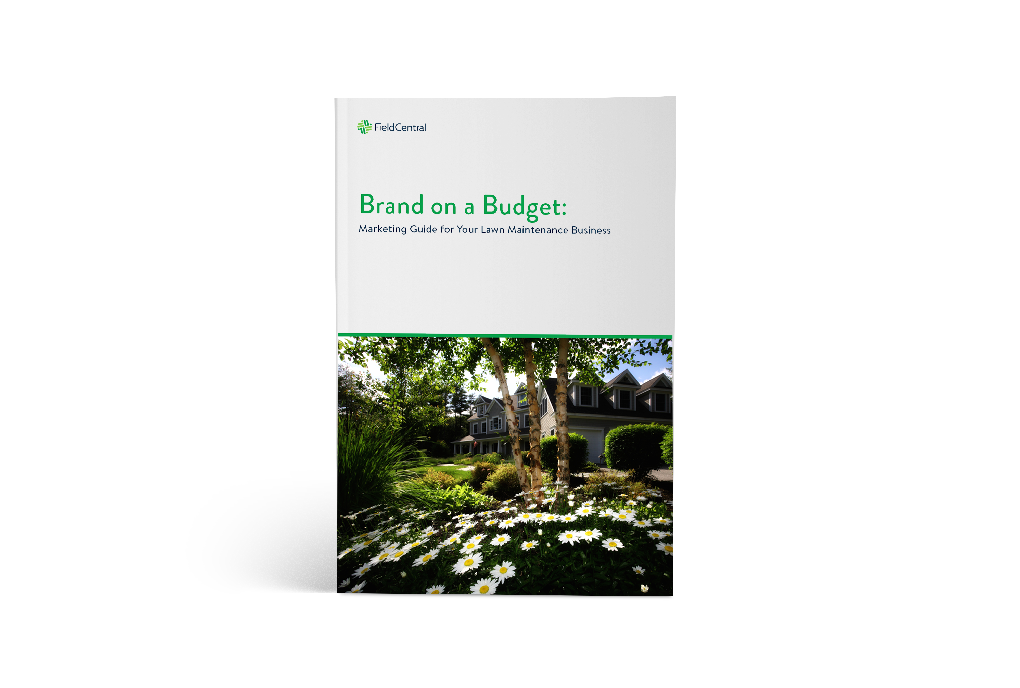 brand on a budget  marketing guide for your lawn